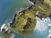 Bucht in Hahei - Luftaufnahme III