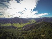 Sicht vom Pelorus Scenic Reserve