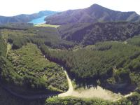 Marlborough Sound VI
