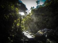 Sonnenstrahlen am Wainui Wasserfall