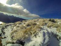 Schöner Schnee hier oben