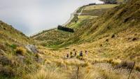 Aufstieg zum Breast Hill Track