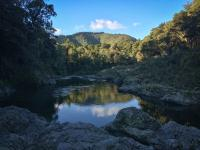 Pelorus Scenic Reserve