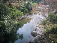 Wairoa Gorge (Schlucht)