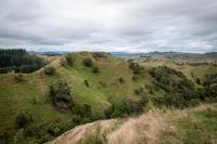 Auf der Strecke des Wanganui River