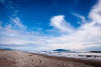 Strand vor Plimmerton