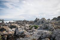 Owhiro Bay - Wellington