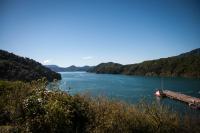 Picton - Südinsel